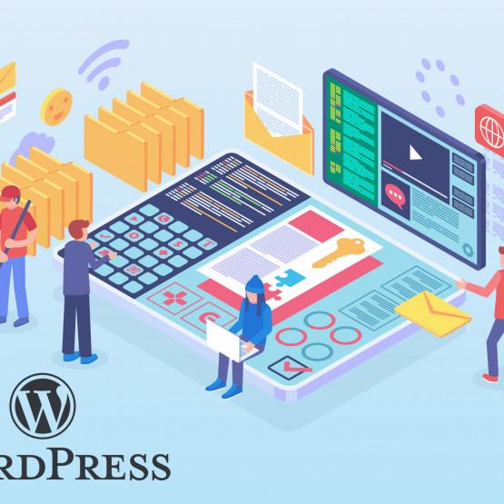 WordPress jak CMS, ilustracja artykułu